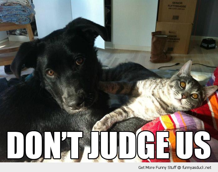 Don't Judge Us