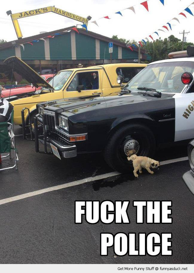 Fuck The Police