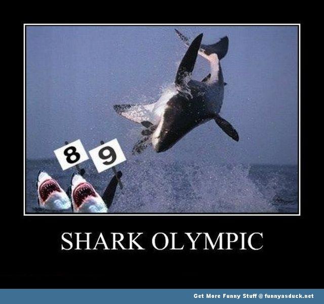 Shark Olympic