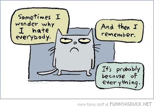 I Hate Everybody