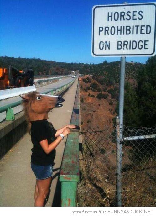 Horses Prohibited