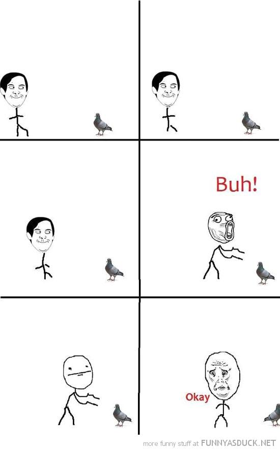 Pigeon Rage