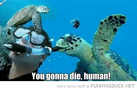 You Gonna Die!