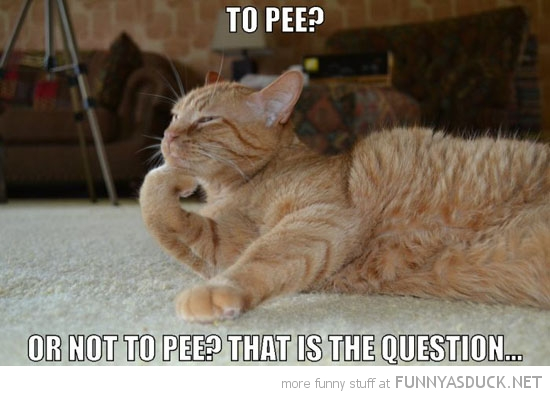 To Pee?