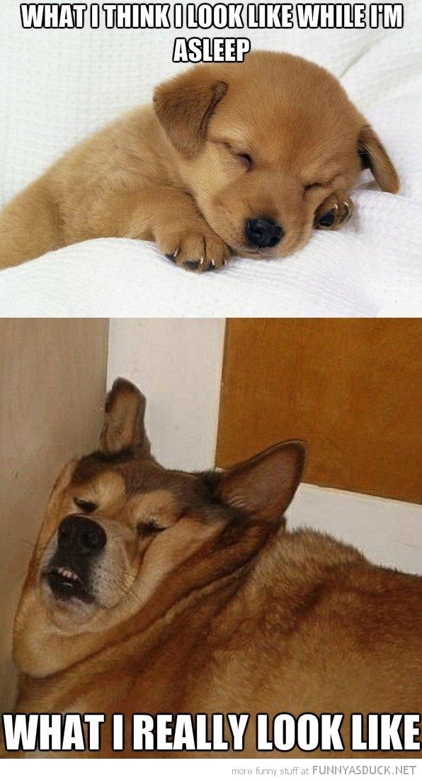 When I'm Asleep
