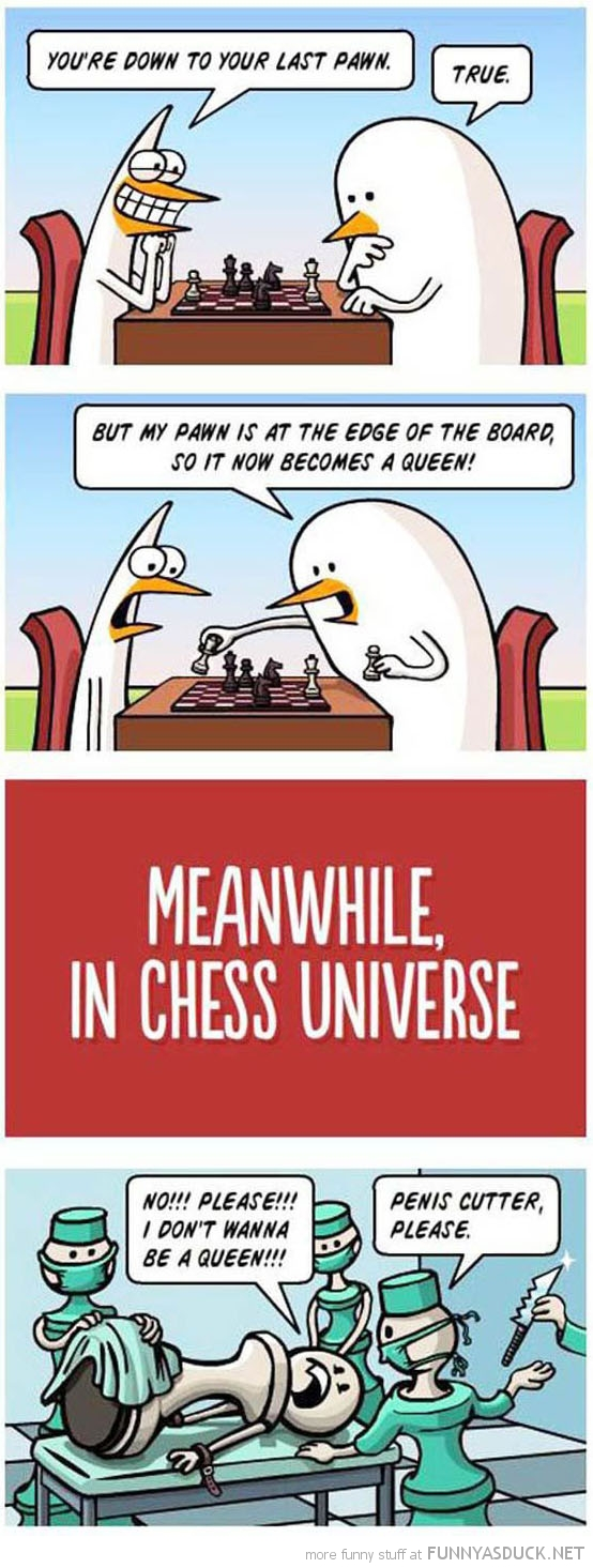 Cheese Universe