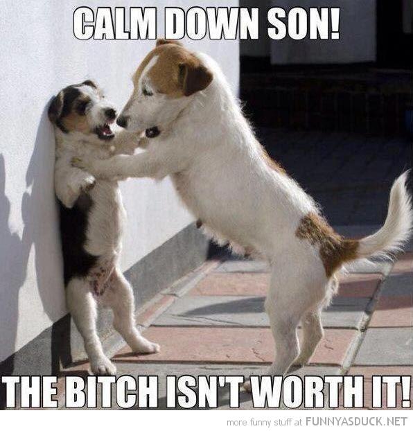 Calm Down Son!