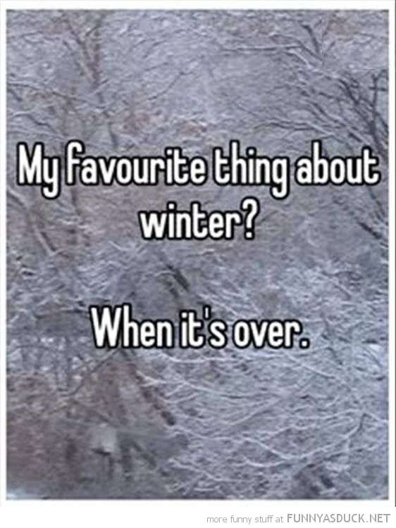 Favorite Thing About Winter